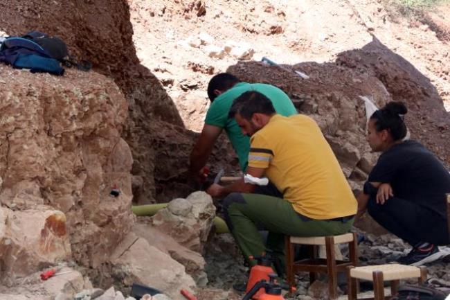 2021/09/1631273087_corak-yerler-omurgali-fosil-lokalitesi-nden-b-5-14360868_osd.jpg