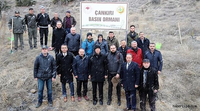 Çankırı'da Basın Hatıra Ormanı Oluşturuldu