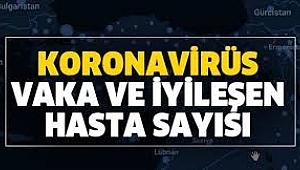 Çankırı'da Koranaviris Tablosu