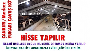 Türkmenoğlu Hayvancılık Kurbanlık Satışlarına Başladı