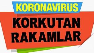Çankırı'da Koronavirüs İle İlgili Son Resmi Rakamlar Açıklandı