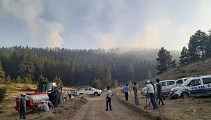 Son Dakika Yapraklı'da Orman Yangını