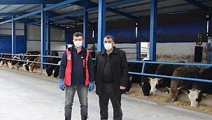 TKDK'dan Aldığı Destekle Et Üretimini İki Katına Çıkardı