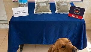Uyuşturucu Madde İmal Ve Ticareti Operasyonunda 2 Kişi Yakalandı