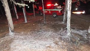 Çankırı'daki Orman Yangınında Kundaklama İddiası