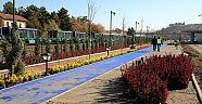 TCDD Parkı ve Açık Hava Müzesi'nde Peyzaj Çalışmaları Başladı